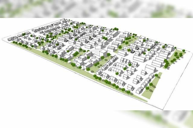 In Grenzach-Wyhlen sollen Minihäuser und Wohnblöcke gebaut werden