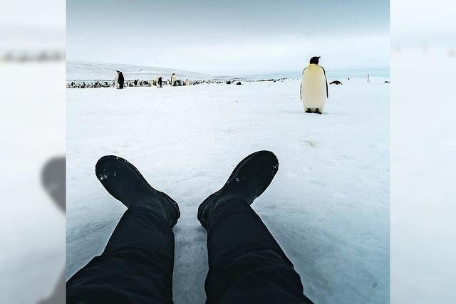 Abenteuerchen im Eis