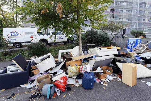 Müllberg im Stadtteil Stühlinger wurde entfernt