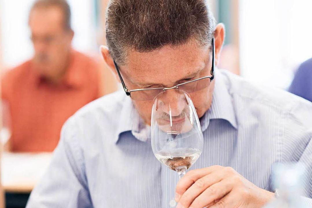 Konzentration auf den Wein im Glas: Ei...ter bei der AWC Vienna bei der Arbeit.  | Foto: Ulrich Dobiasch