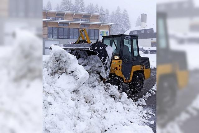 Mühe und Faszination des ersten Schnees