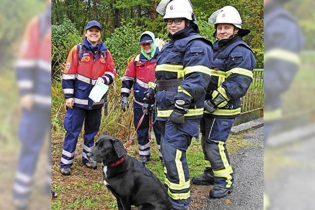 Feuerwehr weiß genau, was zu tun ist