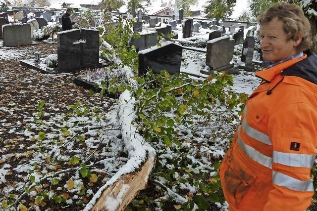 Schäden auf dem Friedhof