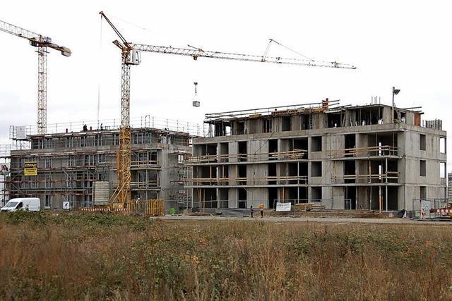 Der Geschäftsführer der Baugenossenschaft Haltingen-Weil warnt vor hohen Mieten