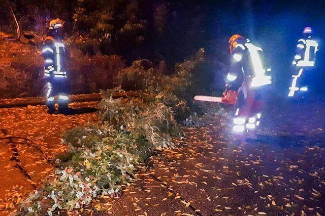 Feuerwehr räumt Bäume von den Straßen