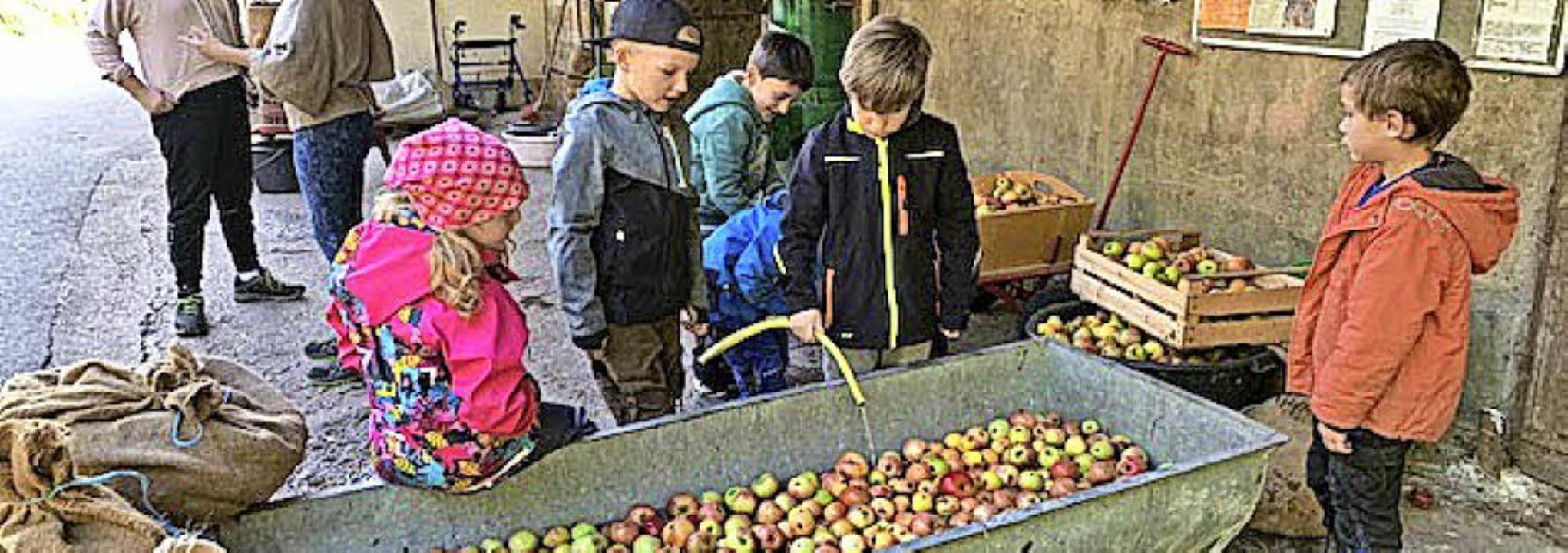 <BZ-FotoAnlauf>Apfelaktion: </BZ-FotoA...ifrig beim Verarbeiten der Äpfel mit.   | Foto: Privat