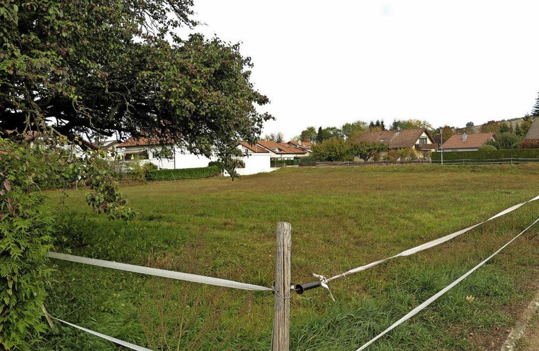 Zentral gelegen, für Geschosswohnungsb...neu überplant und bebaut werden soll.   | Foto: Dorothee Philipps