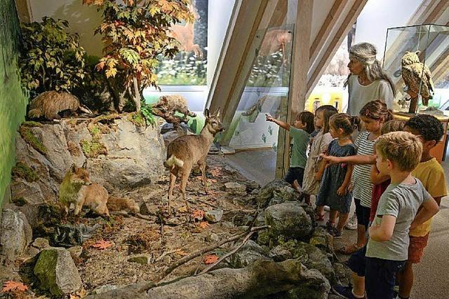 Familientag im Ritterhaus-Museum