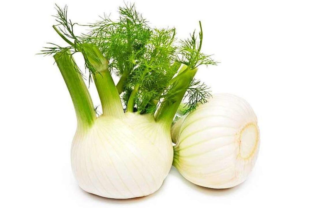 Fenchel gilt zwar als Heilpflanze, mac...ispiel zu Fisch oder Tomatengerichten.    Foto: rdnzl - Fotolia
