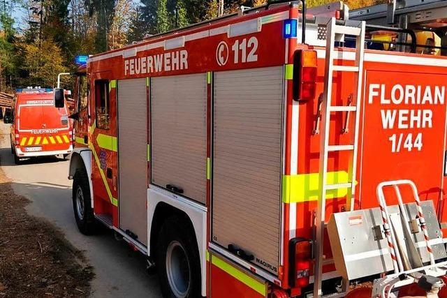 Feuerwehr löst Restglutnester im Wald