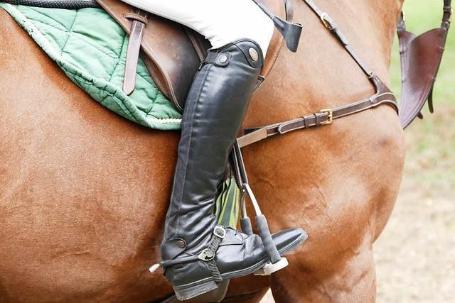 Pferdemist in Karsau: Reiterhof soll eigenen Weg bauen