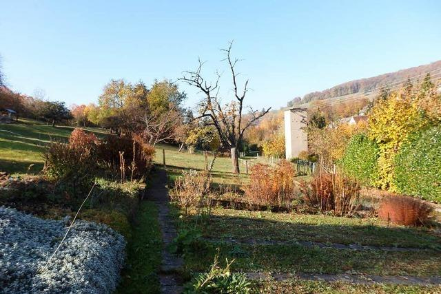 Gemeinderat Inzlingen stimmt für neues Wohngebiet