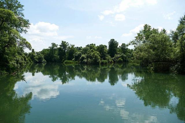 Nabu warnt: Seilbahn-Pläne des Europa-Parks könnten