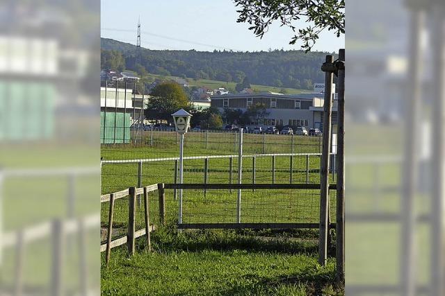 Stadt Lörrach schlägt Konzept für Sportstätten vor