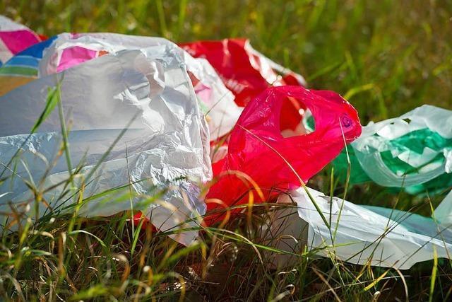 Plastik- oder Papiertüte: Was ist weniger schädlich für die Umwelt?