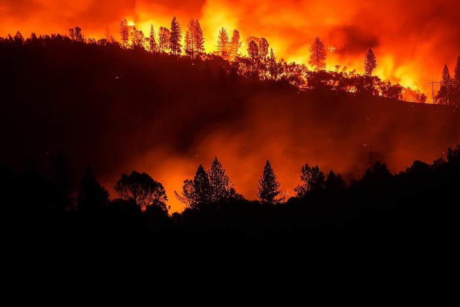 Die schweren Waldbrände in Kalifornien haben verheerende Schäden angerichtet und viele Menschen das Leben gekostet. (Foto: dpa)