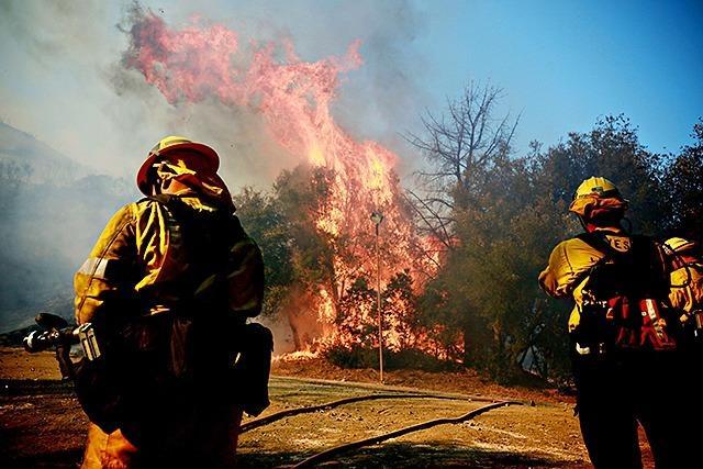 Fotos: Verheerende Feuer