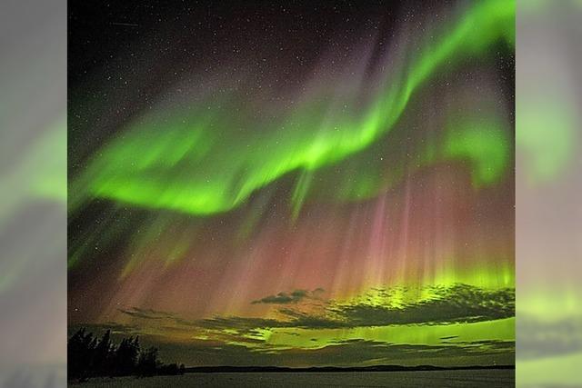 Bilderreise durch arktische Weiten