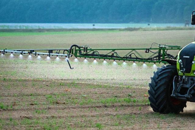 Wozu gibt es Pestizide?