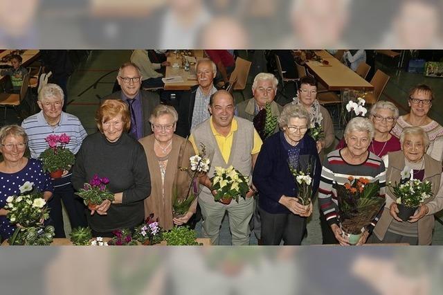 Blumenschmuck in Oberschopfheim