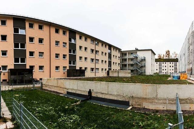 Wohnungswirtschaft Waldkirch will kräftig investieren