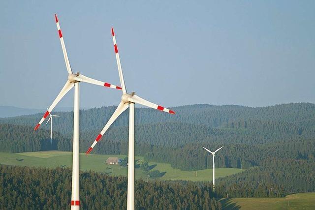 Denkpause im Kleinen Wiesental für Windkraft Schlichtung