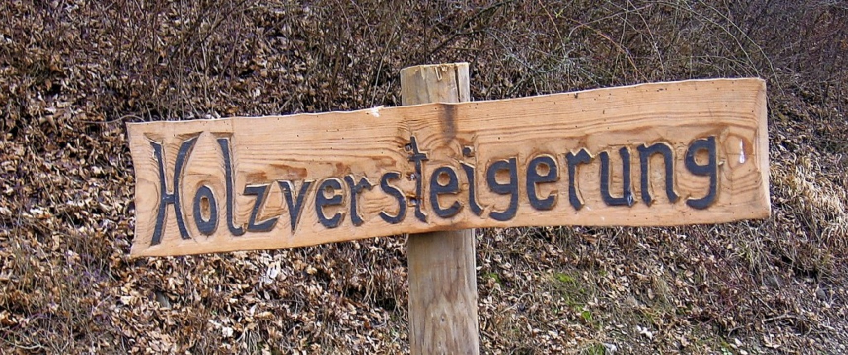 Bald  kann man  im Forstrevier Markgräflerland   mitsteigern.  | Foto: Senf