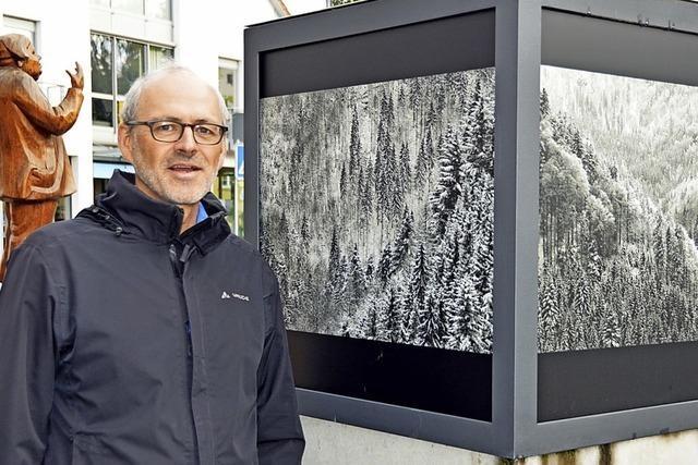 Schwarzwald mit der Kamera verdichtet