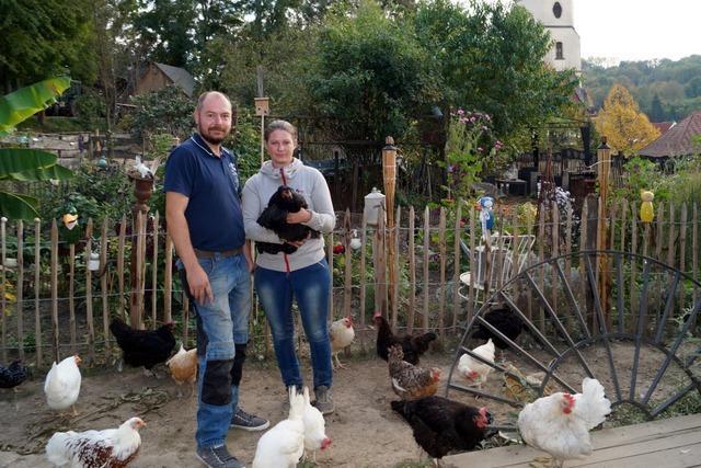 Von Schliengen nach Müllheim: Neue Bleibe für Rebecca Benz und ihre Tiere