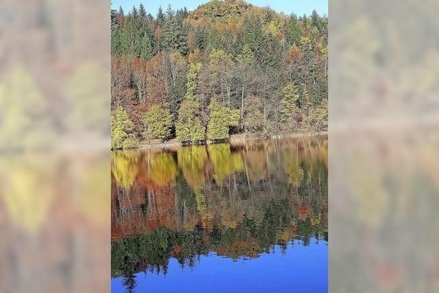So einen herbstlichen Anblick bietet der Bergsee in Bad Säckingen