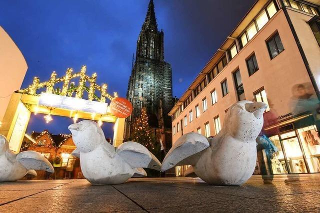 Diese Anti-Terror-Spatzen aus Beton sollen den Ulmer Weihnachtsmarkt sichern