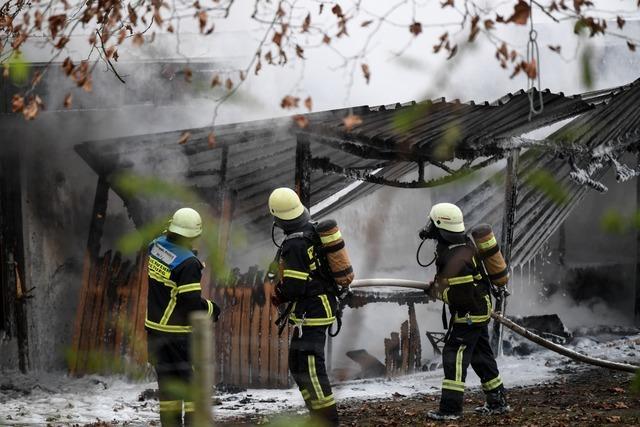 Brand zerstört Anbau bei Kleintierzüchtern und beschädigt Vereinsheim