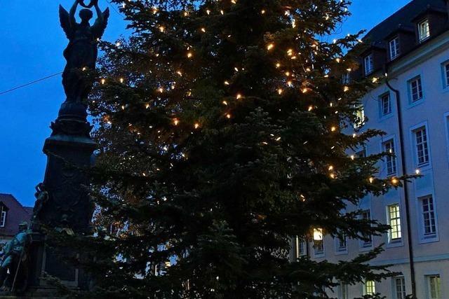 Darum sind Freiburgs Weihnachtsbäume untenrum nackig