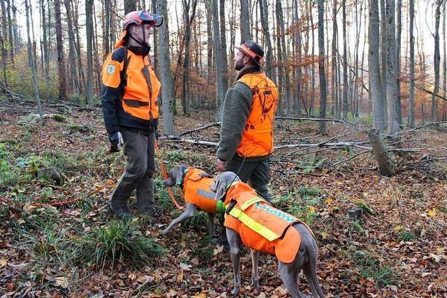 Hundeführer, die angeschossenes Wild aufstöbern, machen einen gefährlichen Job