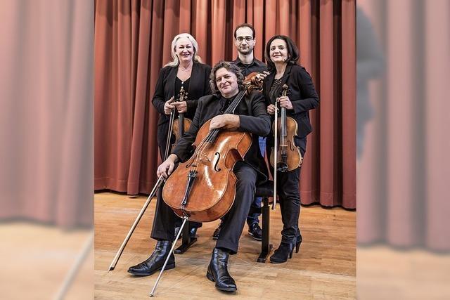 Streichquartett konzertiert in der Städtischen Musikschule