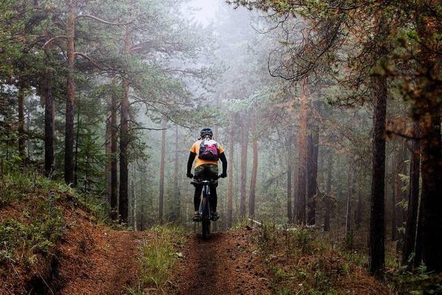 Wanderer und Mountainbiker kommen sich im Schwarzwald immer wieder in die Quere
