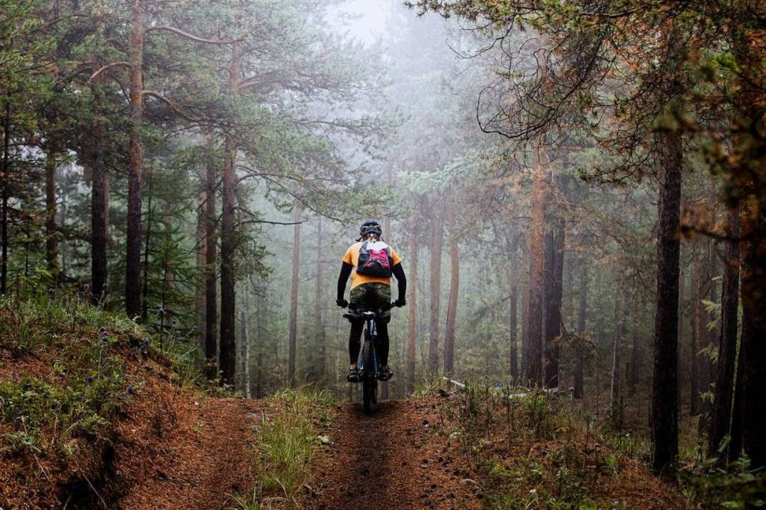 Mountainbiker dürfen im Wald nur auf W...d. Doch daran halten sich nur  wenige.  | Foto: Sportpoint74