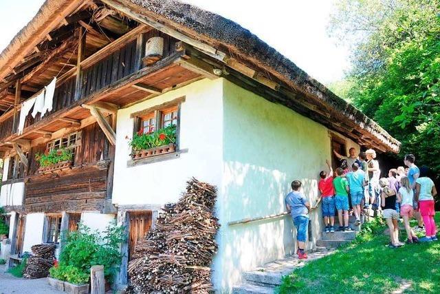Auf dem Schneiderhof in Kirchhausen können Kinder Butter machen