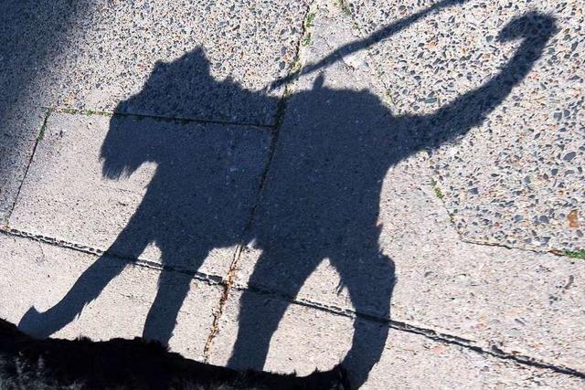 Fußgänger wird mit seinem Hund auf dem Zebrastreifen angefahren und vom Unfallverursacher geschlagen