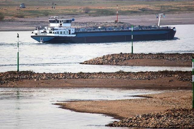 Ab nächster Woche soll der Rhein mehr Wasser führen