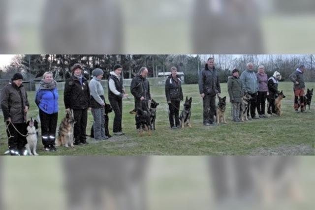 Hundesportler überzeugen