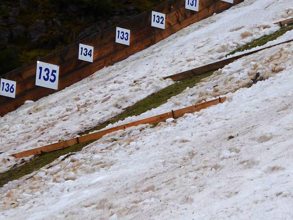 Bretter quer zum Hang sollen den Schnee halten.  | Foto: Peter Stellmach