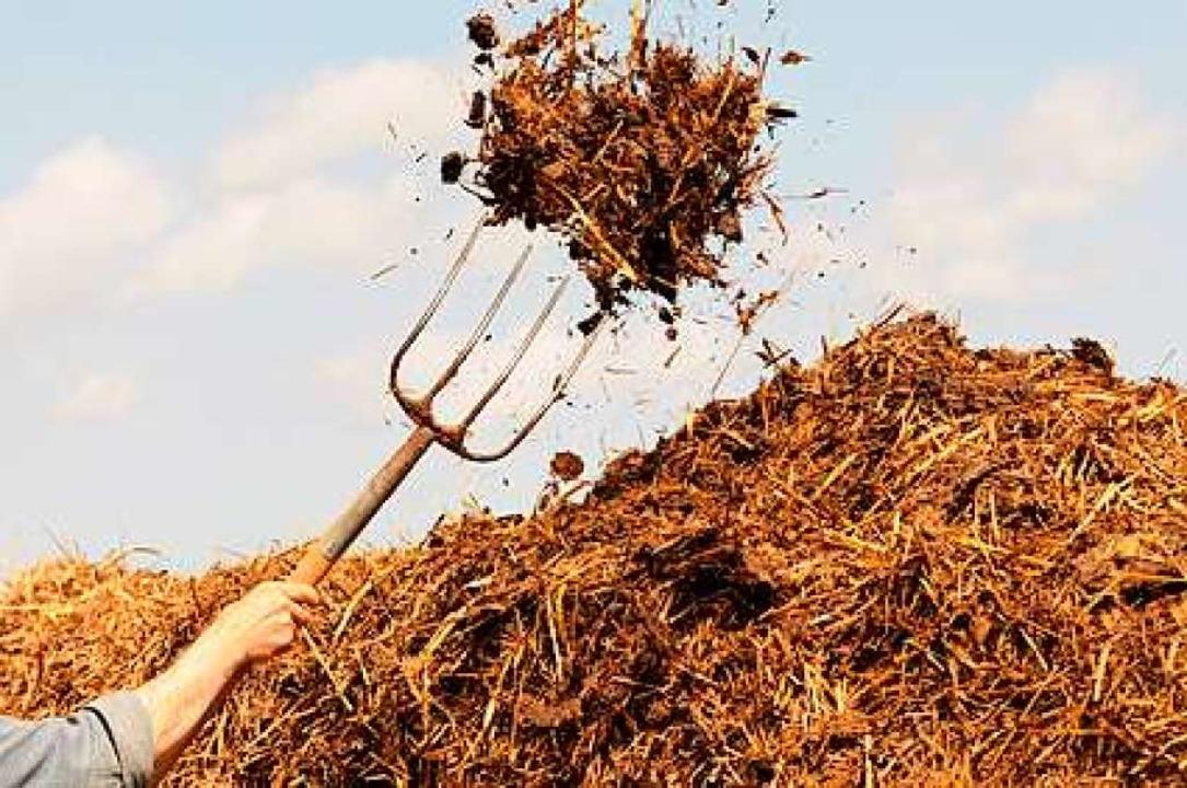 Bei der Hofarbeit mithelfen muss niemand.  | Foto: Carola Schubbel - Fotolia