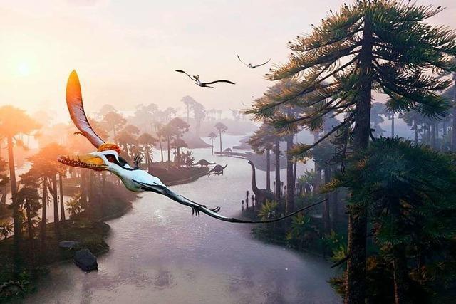 Im Naturhistorischen Museum Basel können Besucher fliegen wie ein Flugsaurier