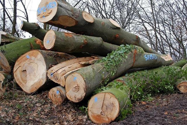 Für Waldbesitzer ändert sich nichts
