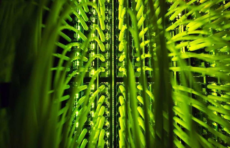 In Heitersheim soll es künftig dank Gl... alle Bürger schnelles Internet geben.  | Foto: dpa