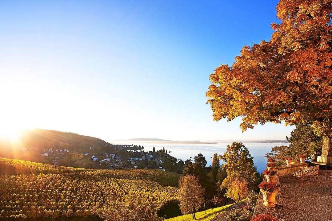 So schön ist die Aussicht vom Schloss ...t Kostümvorführungen und Verkostungen.  | Foto: Helmuth Scham