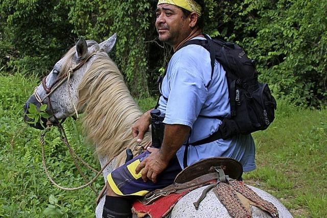 Im Trab durch Costa Rica