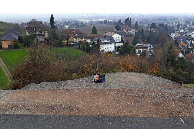 Straßburger Münsterspitz bekommt Offenburger Gegenstück
