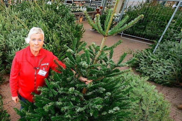 Woran sind Weihnachtsbäume zu erkennen, die ökologisch und fair produziert wurden?